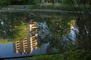Wie ein verschwunschener Ort: Teich im Thälmannpark